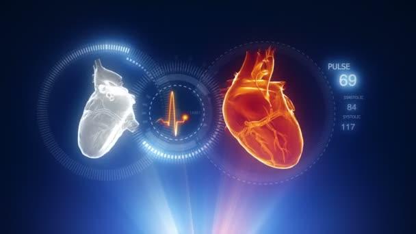 Corazón humano con el rastro de pulso — Vídeo de stock