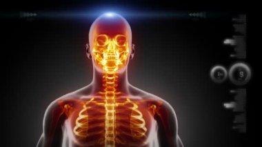 Human head medical scan — Stock Video