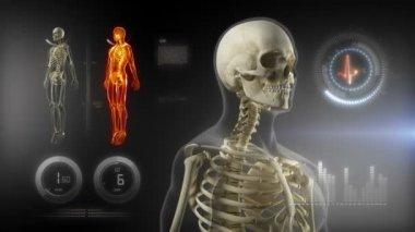 Tela médica de corpo humano — Vídeo Stock