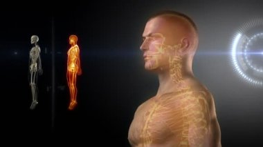 Human body medical x-ray scan — Stock Video