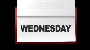 Weekly calendar — Stock Video