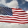 American cotton flag — Stock Video #54799739