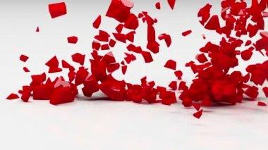 Love explosion — Stock Video