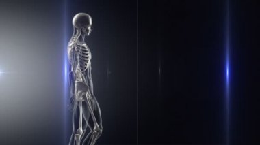 X-ray walk — Stock Video