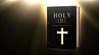 Holy bible — Stock Video