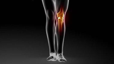 Krem z skóry leczenie stawów kolanowych — Wideo stockowe