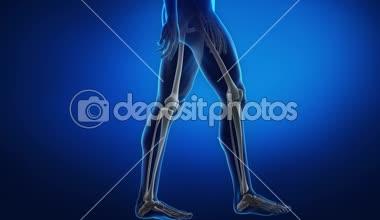 Man's legs in motion — Stock Video