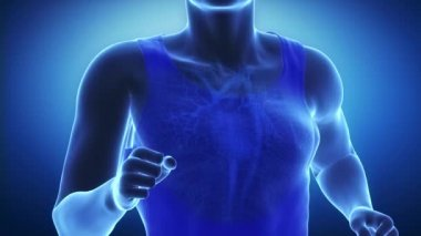 Running man heart scan — Stock Video