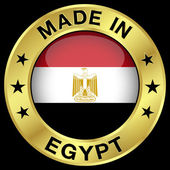 Egypt Made In Badge — Wektor stockowy