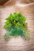 Mixed herbs - dill, cilantro, mint, basil, tarragon and rosemary — Stockfoto