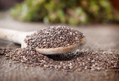 Chia seeds — Stock Photo