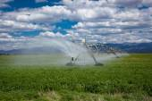 Center pivot agricultural irrigation system — Stock Photo