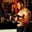 Bodybuilder training gym — Stock Photo #54888389