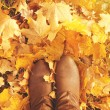 Fall, autumn, leaves, legs and shoes. Conceptual image of legs i — Stock Photo #53667589