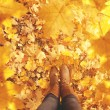 Fall, autumn, leaves, legs and shoes. Conceptual image of legs i — Stock Photo #53667609