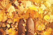 Fall, autumn, leaves, legs and shoes. Conceptual image of legs i — Stock fotografie