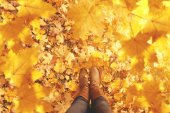 Fall, autumn, leaves, legs and shoes. Conceptual image of legs i — Stock Photo
