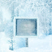 Winter background, scene, landscape. Wooden sign in the winter f — Stock Photo
