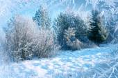 Winter background, landscape. Winter trees in wonderland. Winter scene. Christmas, New Year background — Stock Photo