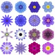 Collection Various Blue Concentric Flowers Isolated on White — Stock Photo #53644687