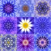 Collection of Nine Blue Concentric Flower Mandalas Kaleidoscope — Stock Photo
