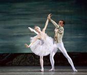 Swan Lake ballet dancers — Stock Photo