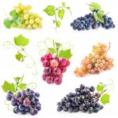 Collections of Ripe grapes — Stock Photo
