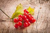 Red viburnum berries on wooden table — Fotografia Stock