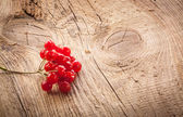 Red viburnum berries on wooden table — Stock Photo