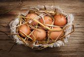 Eggs in hay — Stock Photo