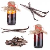 The fragrant vanilla and extract — 图库照片