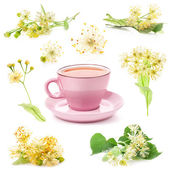 Pink cup of tea and Linden flowers isolated on white background — Stock Photo