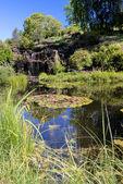 Garden pond and waterfalls — Stock Photo