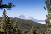 Scenic view of mount Teide — Stock Photo