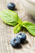 Green mint leaf with blueberry — Stock Photo