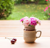 Pink carnation flowers in small ceramic vase — Stock Photo