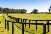 Double fence at horse farm. — Stock Photo