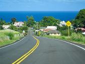Small village near ocean in Big Island, Hawaii. — Foto de Stock