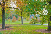 Colorful autumn in park — Stock Photo