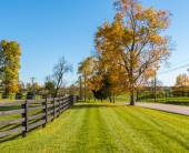 Country scenery — Stock Photo