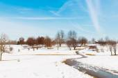 Snowy park , winter scenery  — Foto de Stock