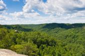 Mountain forest. Red River Gorge in Kentucky, USA — Stock Photo
