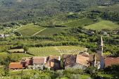 Motovun village in Croatia, Europe — Stock Photo