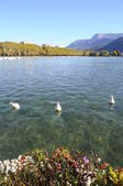 Lake of Annecy and mountains, in france — Stock Photo