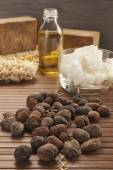 Shea nuts on a natural background — Stock Photo