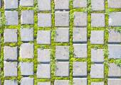 paving stone style with grass seamless pattern — Stock Photo