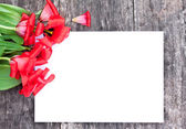 Faded red tulips on the oak brown table with white sheet of pape — Stock Photo