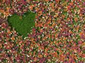 Grama em forma de coração no fundo de flores — Fotografia Stock