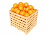 Clementines in container. Isolated against white background — Stock Photo