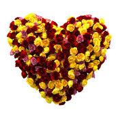 Rose heart isolated on white — Stock Photo